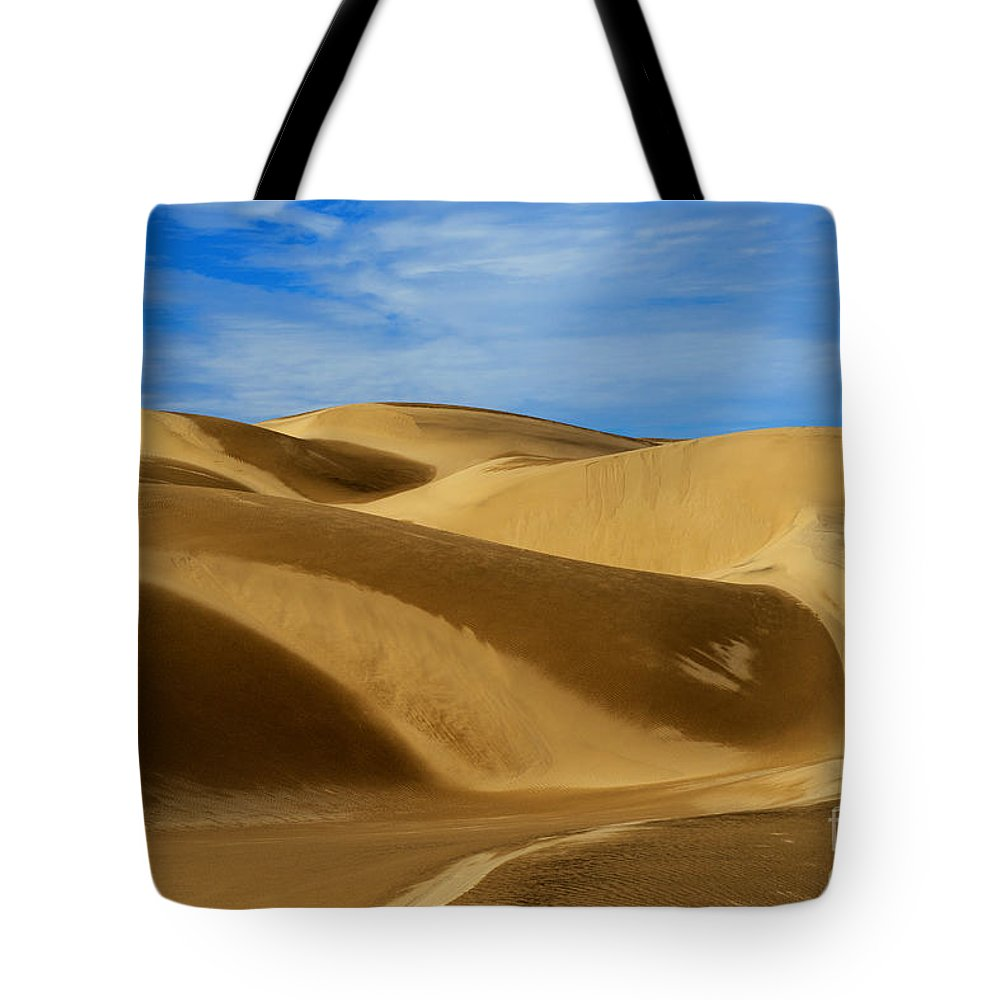 Oceano Sand Dunes Tote Bag featuring the photograph Oceano Sand Dunes by Yefim Bam