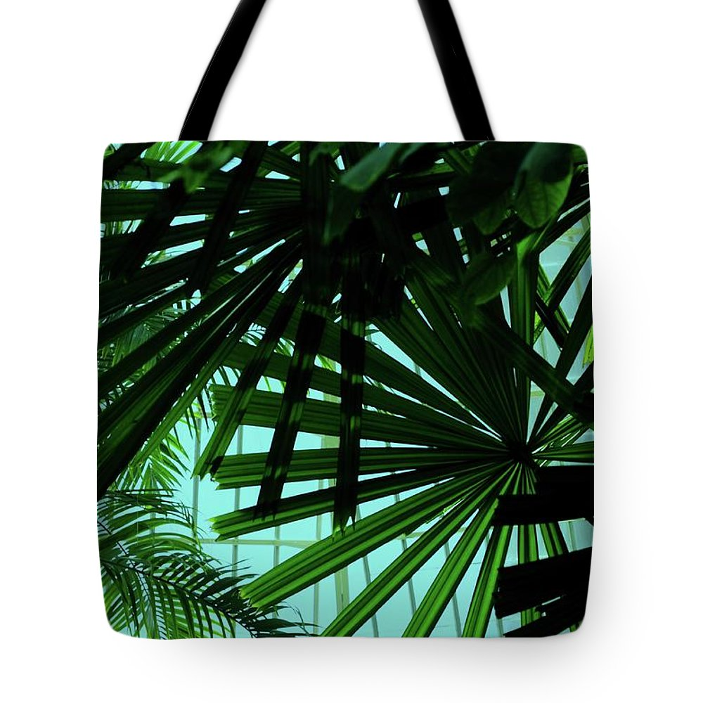 Palm Tote Bag featuring the photograph Palm Trees by Kathleen Struckle