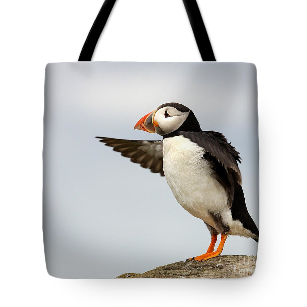 Lisa Cockrell Tote Bag featuring the photograph Puffin On The Farne Islands Great Britain by Lisa Cockrell
