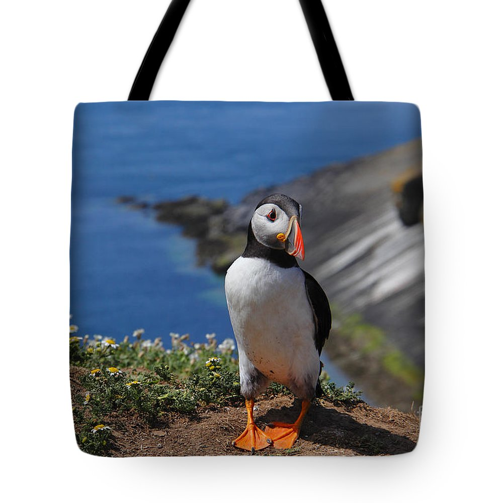 Puffin Tote Bag featuring the photograph Puffin by Traci Law