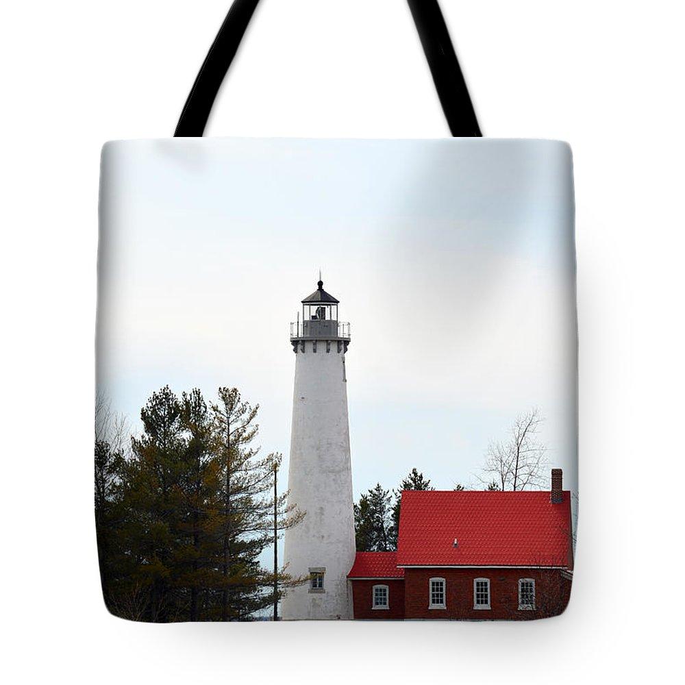 Lake Huron Tote Bag featuring the photograph Sitting Pretty by Linda Kerkau