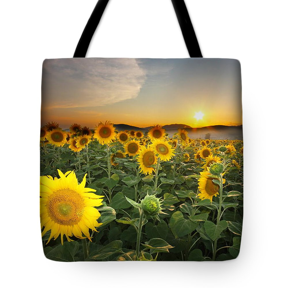 Summer Tote Bag featuring the photograph Summer Morning by Mircea Costina Photography