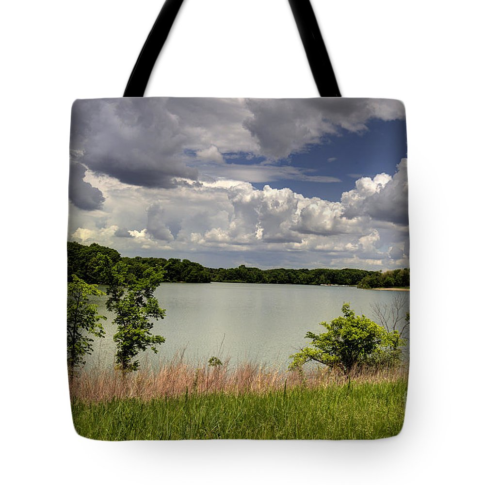 Backgrounds Tote Bag featuring the photograph 3-summer Time At Moraine View State Park by Alan Look