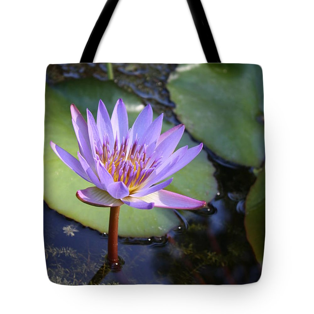 Purple Tote Bag featuring the photograph Blue Water Lily by Irina Davis