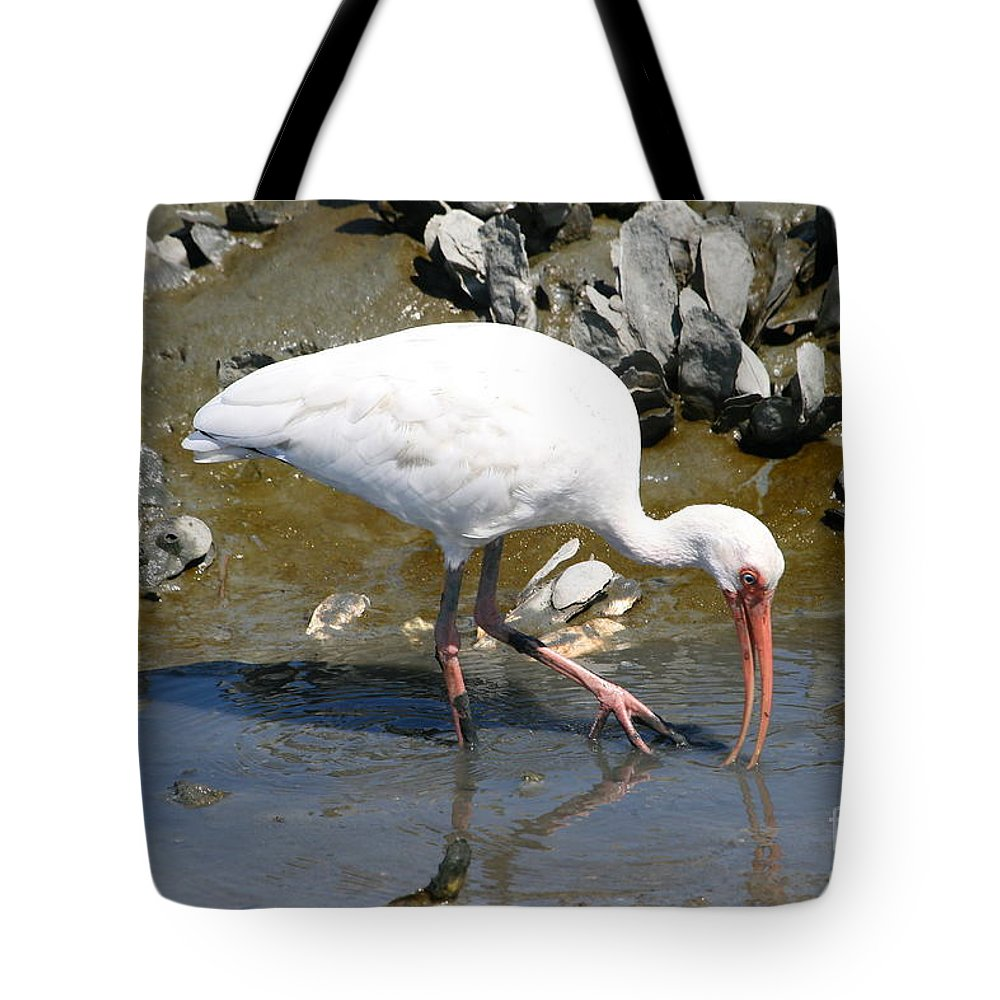 Ibis Tote Bag featuring the photograph White Ibis by Ken Keener