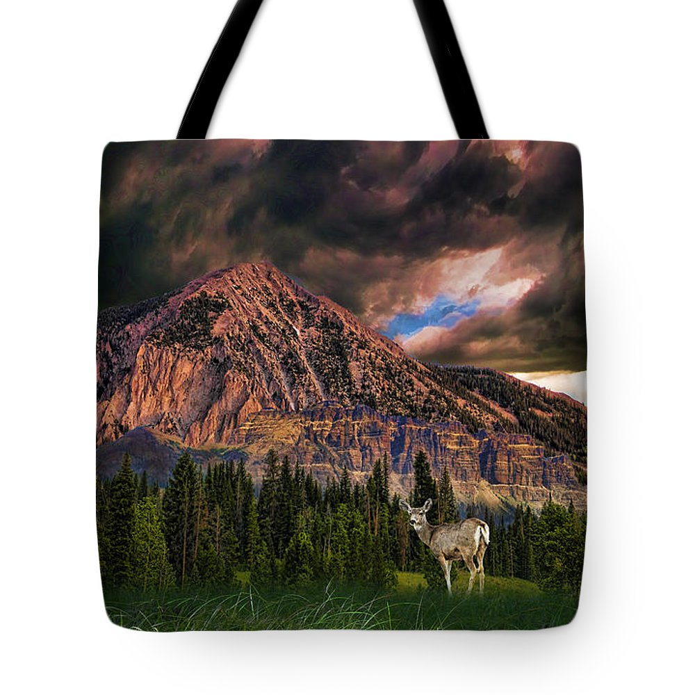 Mountains Tote Bag featuring the photograph 3051 by Peter Holme III