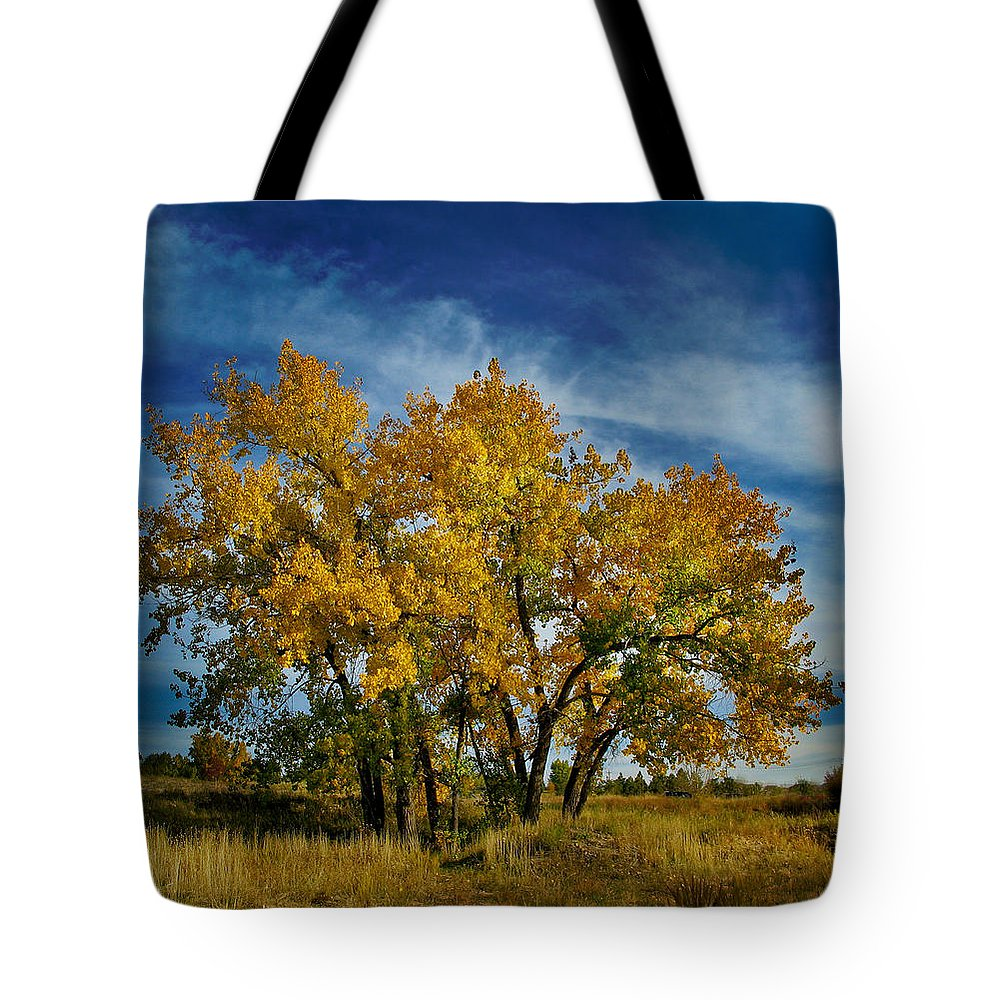 Trees Tote Bag featuring the photograph 3266 by Peter Holme III