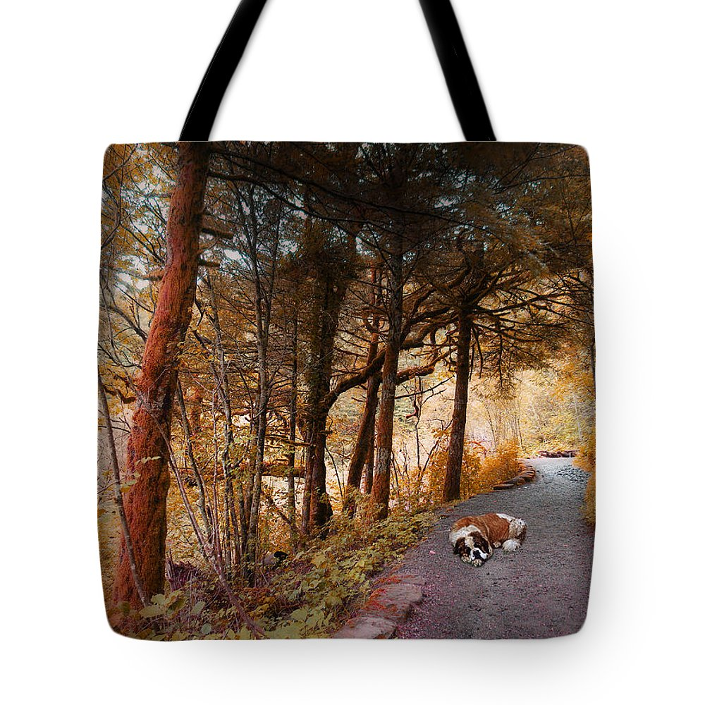 Dog Tote Bag featuring the photograph 3287 by Peter Holme III