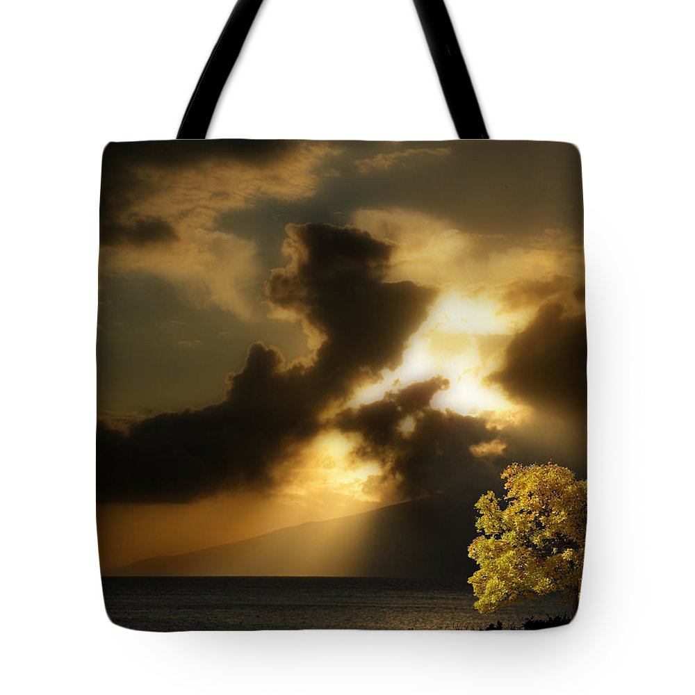 Tree Tote Bag featuring the photograph 3357 by Peter Holme III