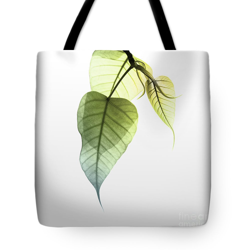 Abstract Tote Bag featuring the photograph Pho Or Bodhi by Atiketta Sangasaeng