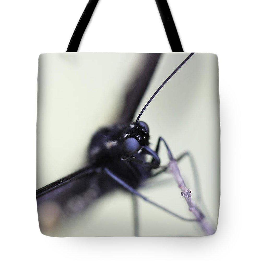 Untitled Tote Bag featuring the photograph Untitled by Gregory Alan