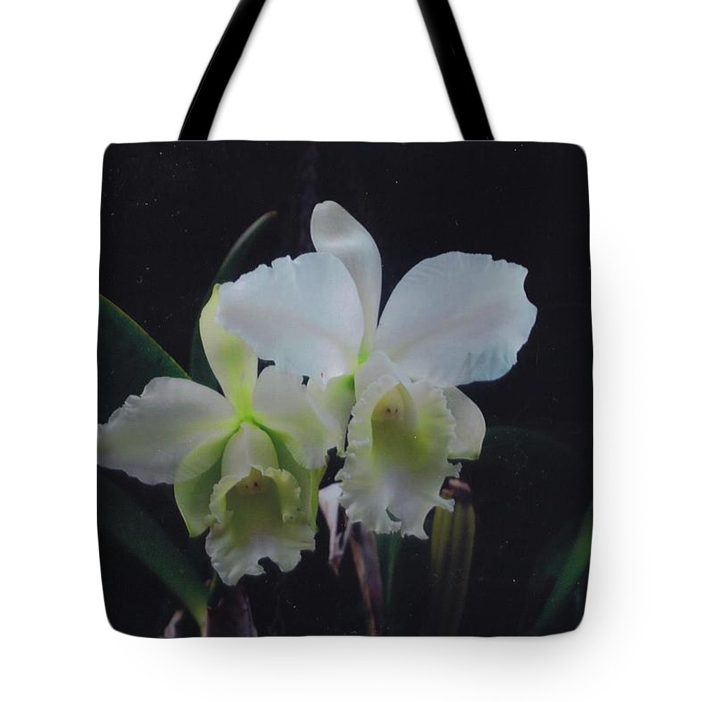 Homegrown Tote Bag featuring the photograph Orchid by Robert Floyd