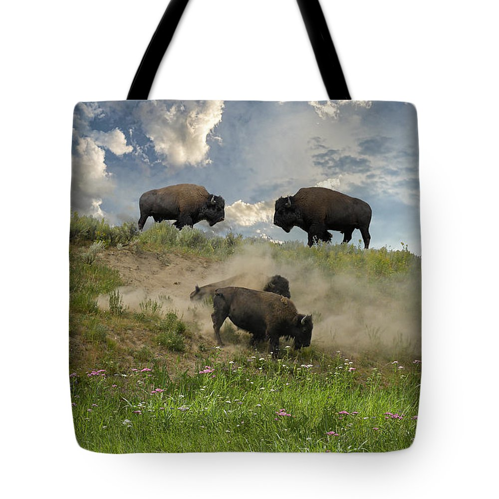 Clouds Tote Bag featuring the photograph 3703 by Peter Holme III