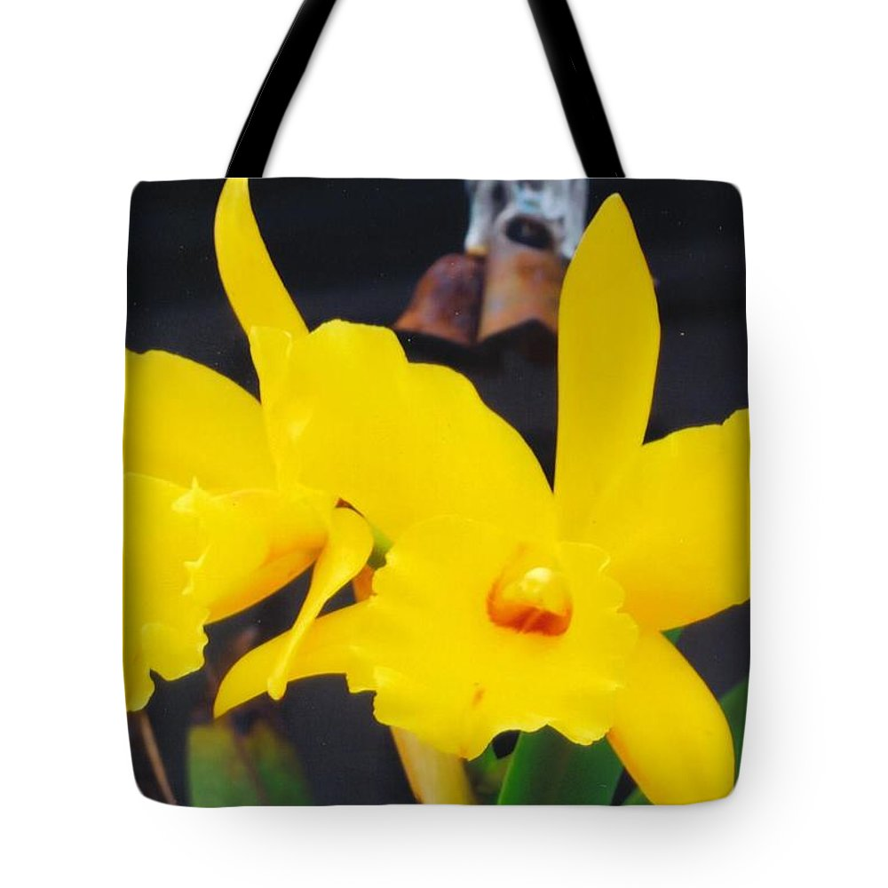 Home Grown Tote Bag featuring the photograph Orchid by Robert Floyd