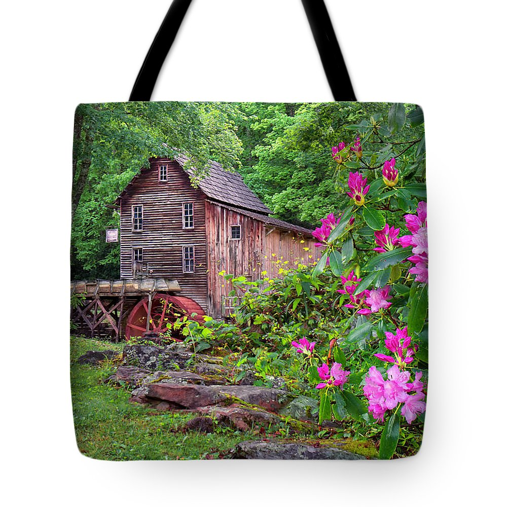 Babcock State Park Tote Bag featuring the photograph Babcock State Park by Mary Almond