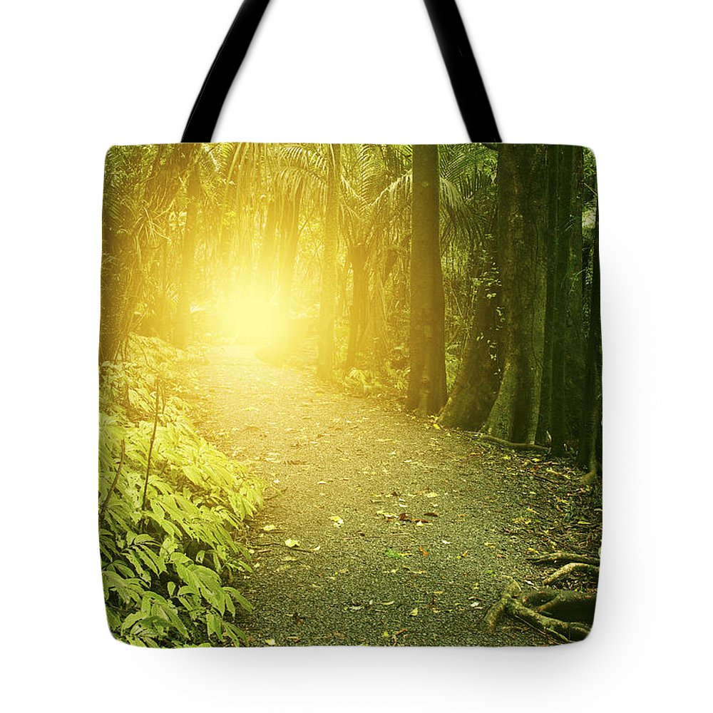 Jungle Tote Bag featuring the photograph Jungle Light by Les Cunliffe