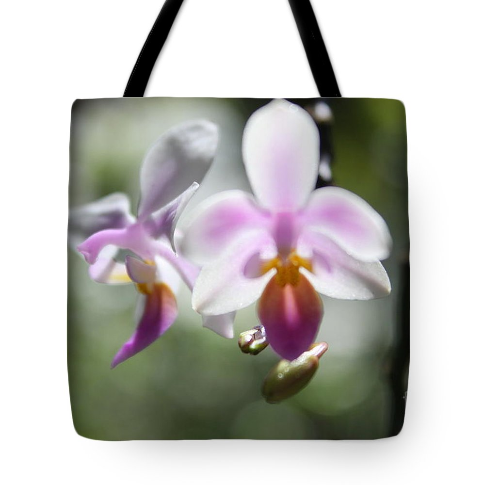 Pink Tote Bag featuring the photograph Orchids Dance by Irina Davis