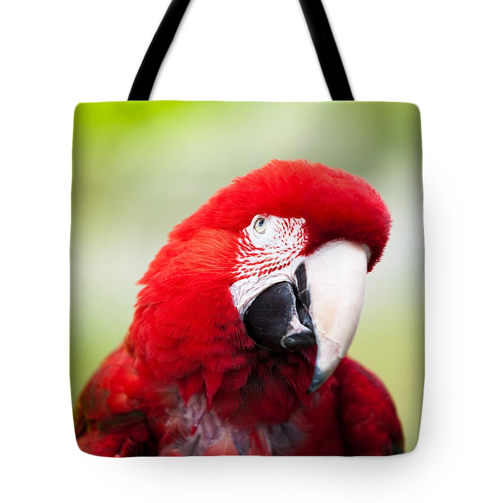 Parrot Tote Bag featuring the photograph Parrot by Sebastian Musial