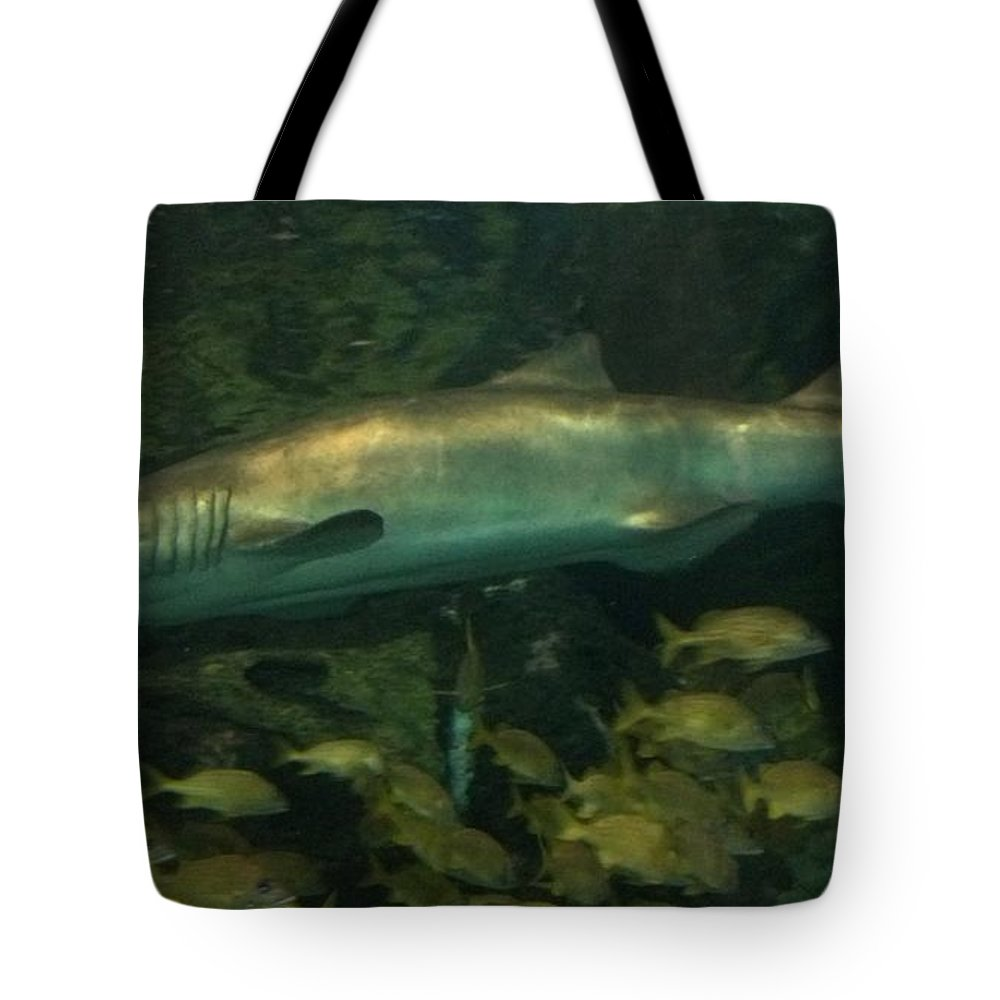 Shark Tote Bag featuring the photograph Shark by Janice Spivey
