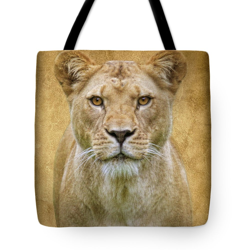 Lion Tote Bag featuring the photograph Stare Down by Steve McKinzie