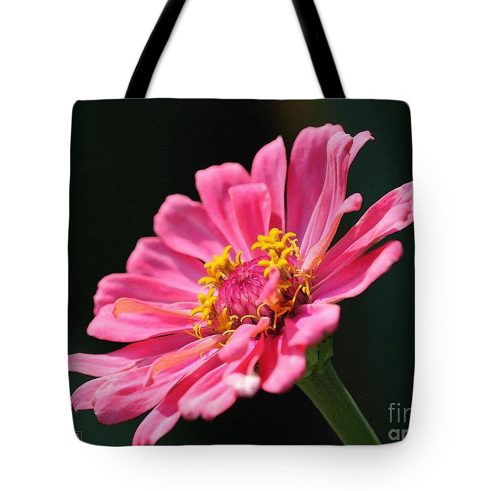 Mccombie Tote Bag featuring the painting Zinnia From The Whirlygig Mix by J McCombie
