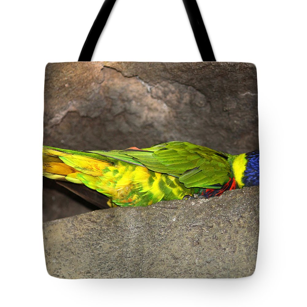 Busch Gardens Tote Bag featuring the photograph 40 Winks by David Nicholls