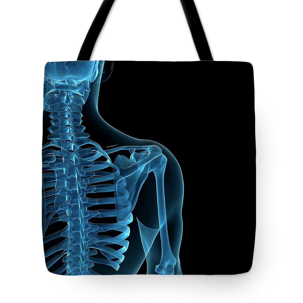 Anatomy Tote Bag featuring the digital art Upper Body Bones, Artwork by Sciepro