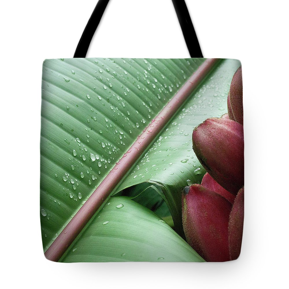 Banana Tote Bag featuring the photograph Banana Leaf by Heiko Koehrer-Wagner