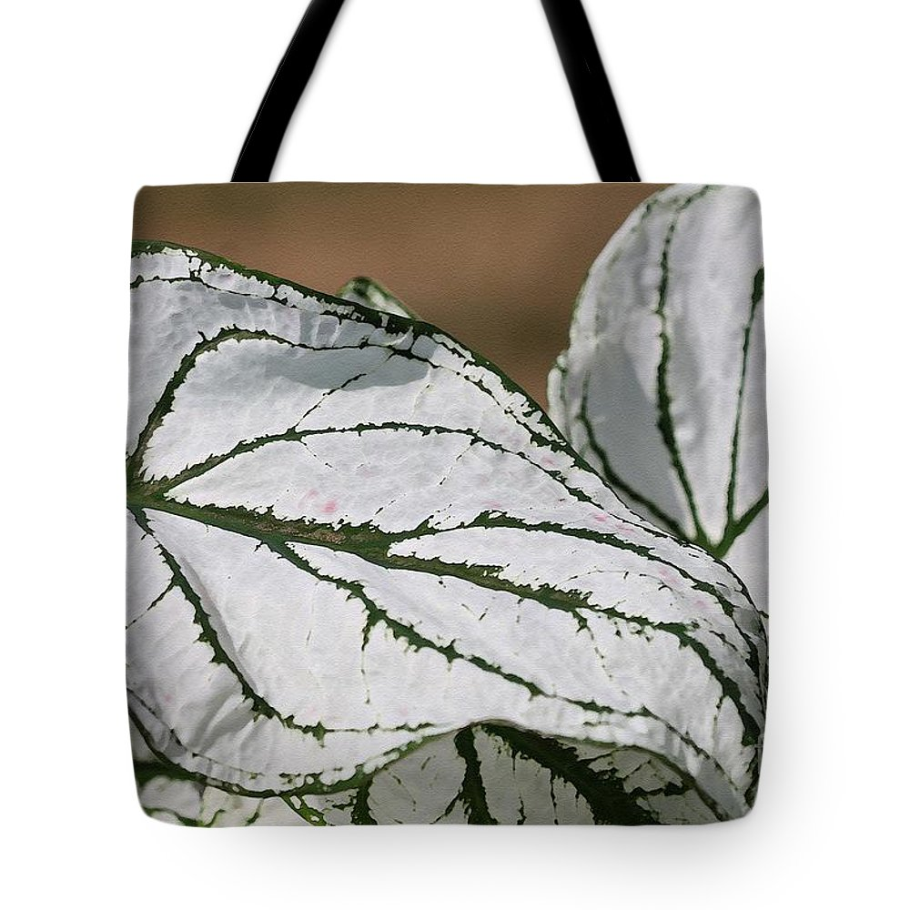 Caladium Tote Bag featuring the painting Caladium Named White Christmas by J McCombie