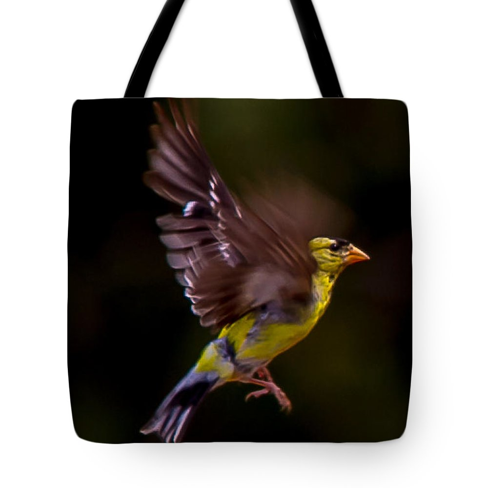 Gold Finch Outdoors Wild Nature All Prints Are Available In Prints Tote Bag featuring the photograph Gold Finch by Brian Williamson
