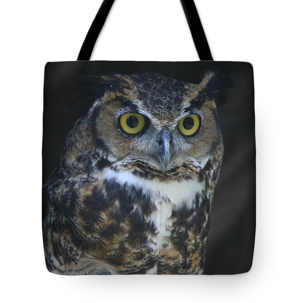 Owl Tote Bag featuring the photograph Great Horned Owl by Ken Keener