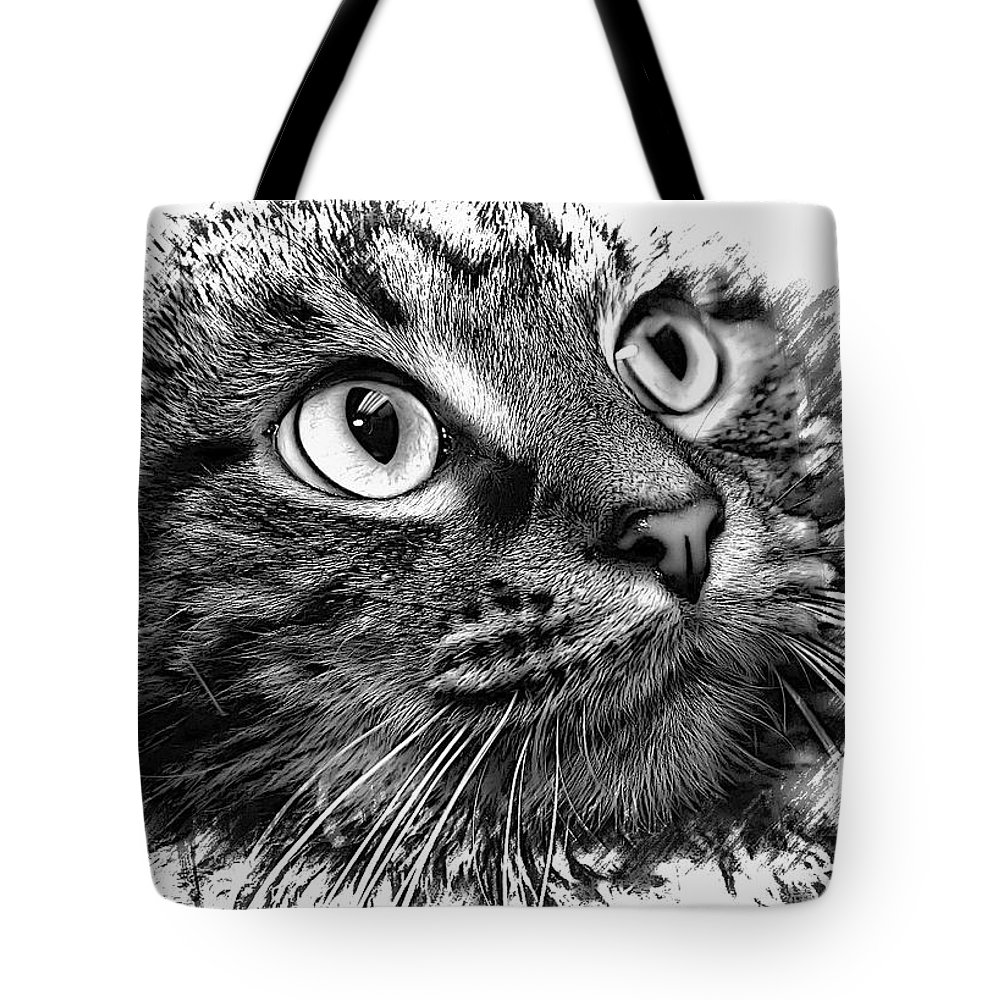 Tabby Tote Bag featuring the photograph Love Me by Joyce Baldassarre