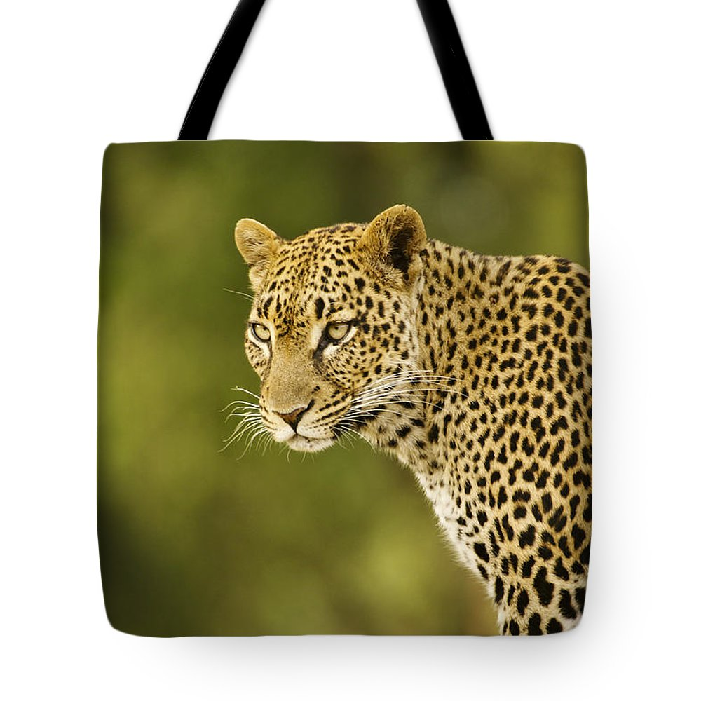 Africa Tote Bag featuring the photograph Lovely Leopard by Michele Burgess