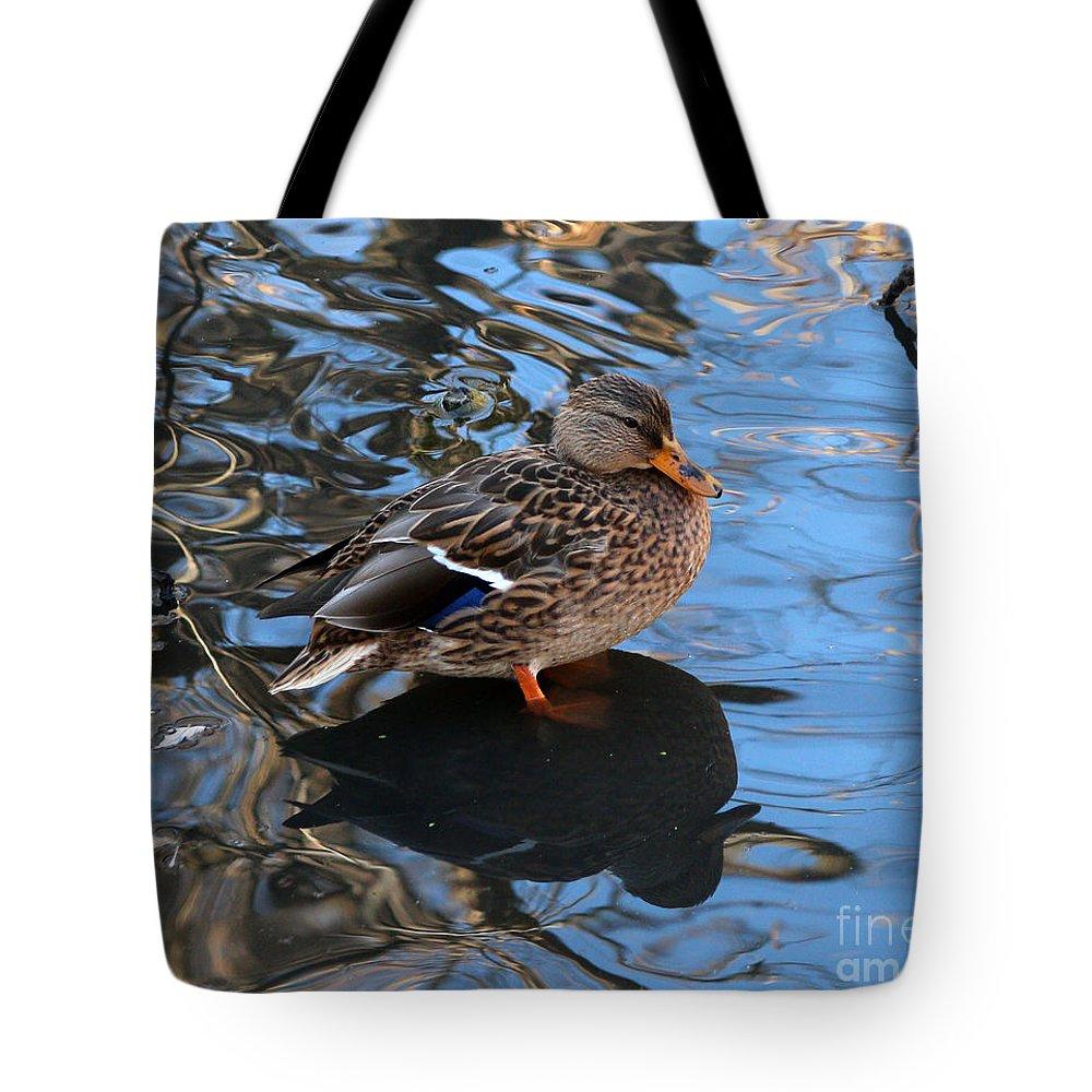 Mallards Tote Bag featuring the photograph Mallard Duck by Lori Tordsen