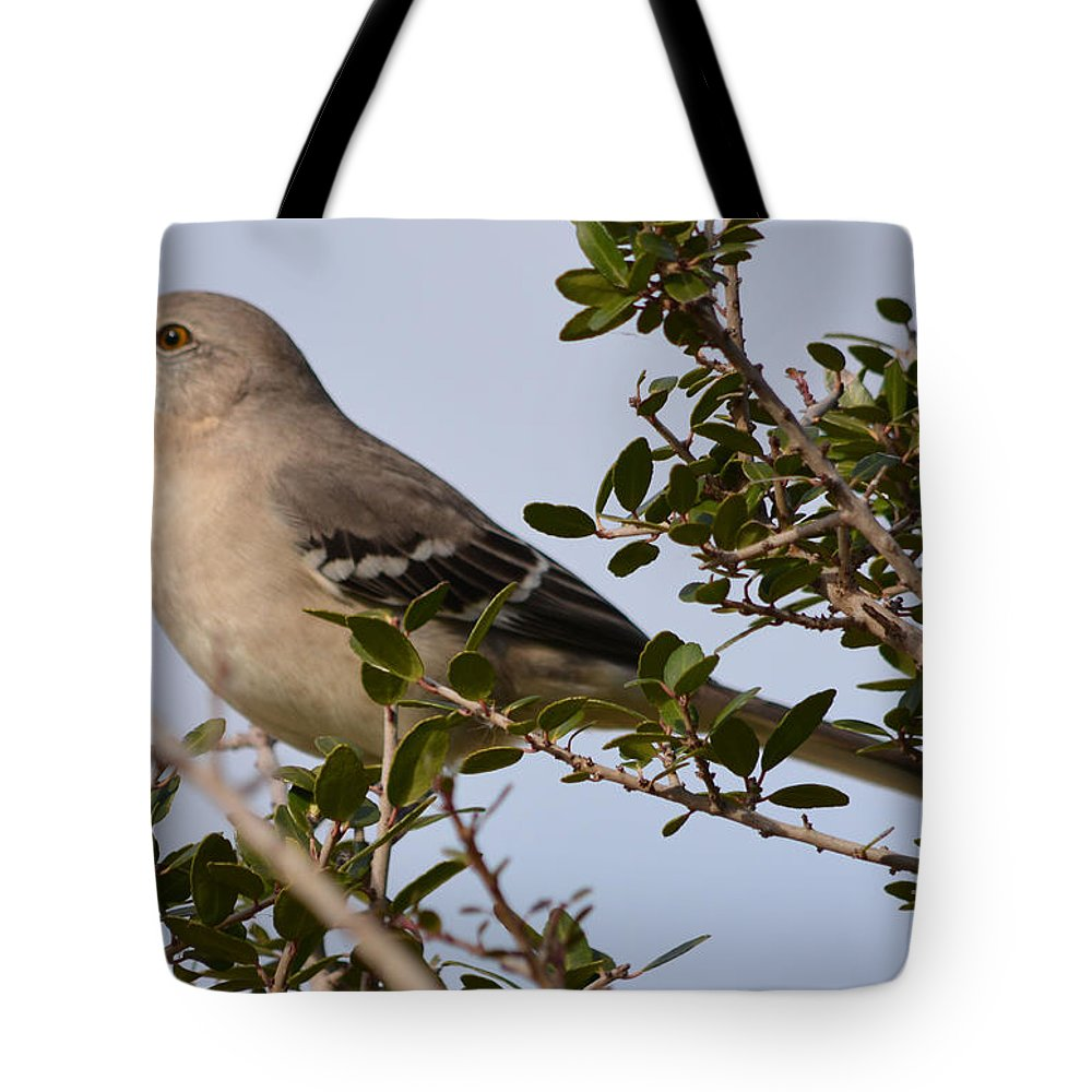 Northern Mockingbird Prints Tote Bag featuring the photograph Northern Mockingbird by Ruth Housley