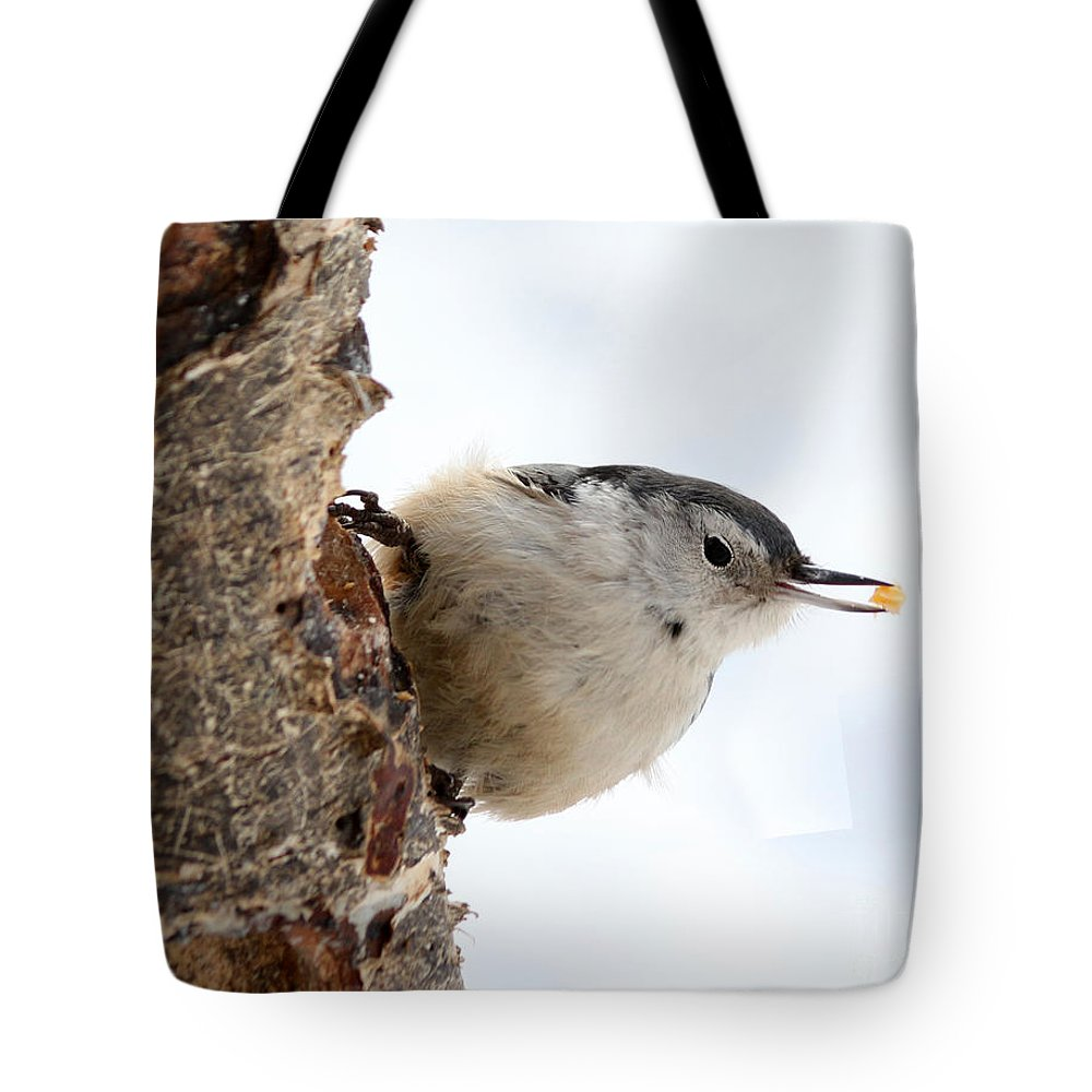 Trees Tote Bag featuring the photograph White-breasted Nuthatch by Lori Tordsen