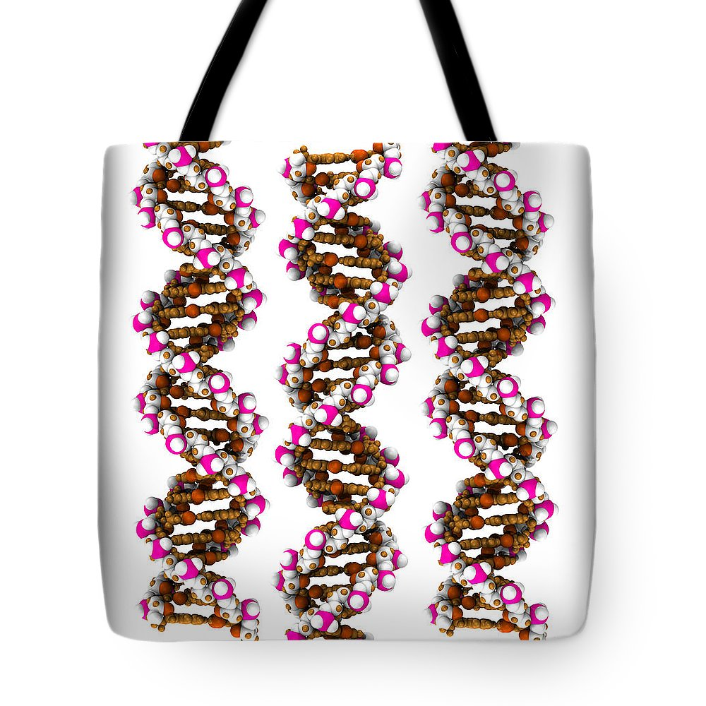 Adenine Tote Bag featuring the photograph 3d Dna Molecule by Scott Camazine