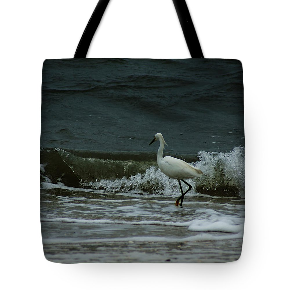 Snowy White Egret Tote Bag featuring the photograph A Beautiful Snowy White Egret On Hilton Head Island Beach by Kim Pate
