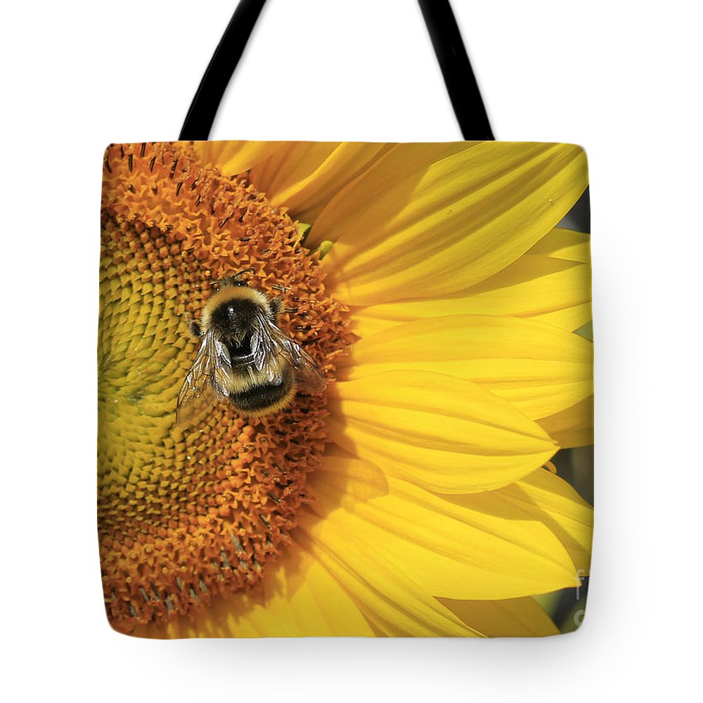 Bee Tote Bag featuring the photograph A Bee Gathering Pollen On A Sun Flower by Peter McHallam