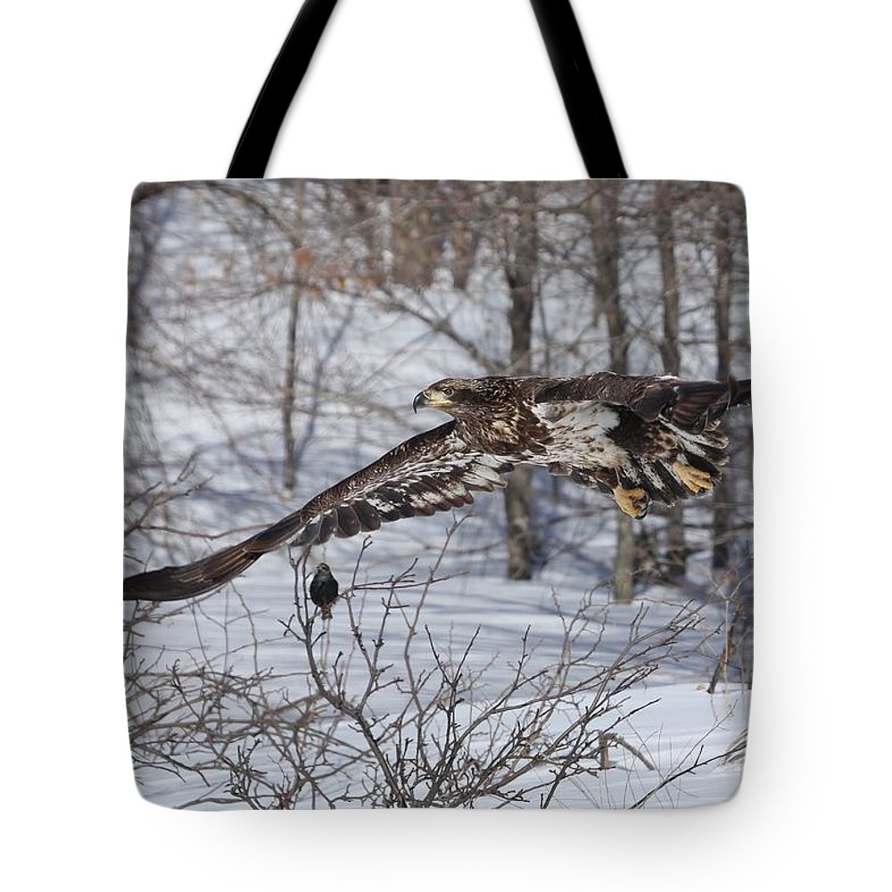 Bald Eagle Tote Bag featuring the photograph A Bird In The Bush by Teresa McGill