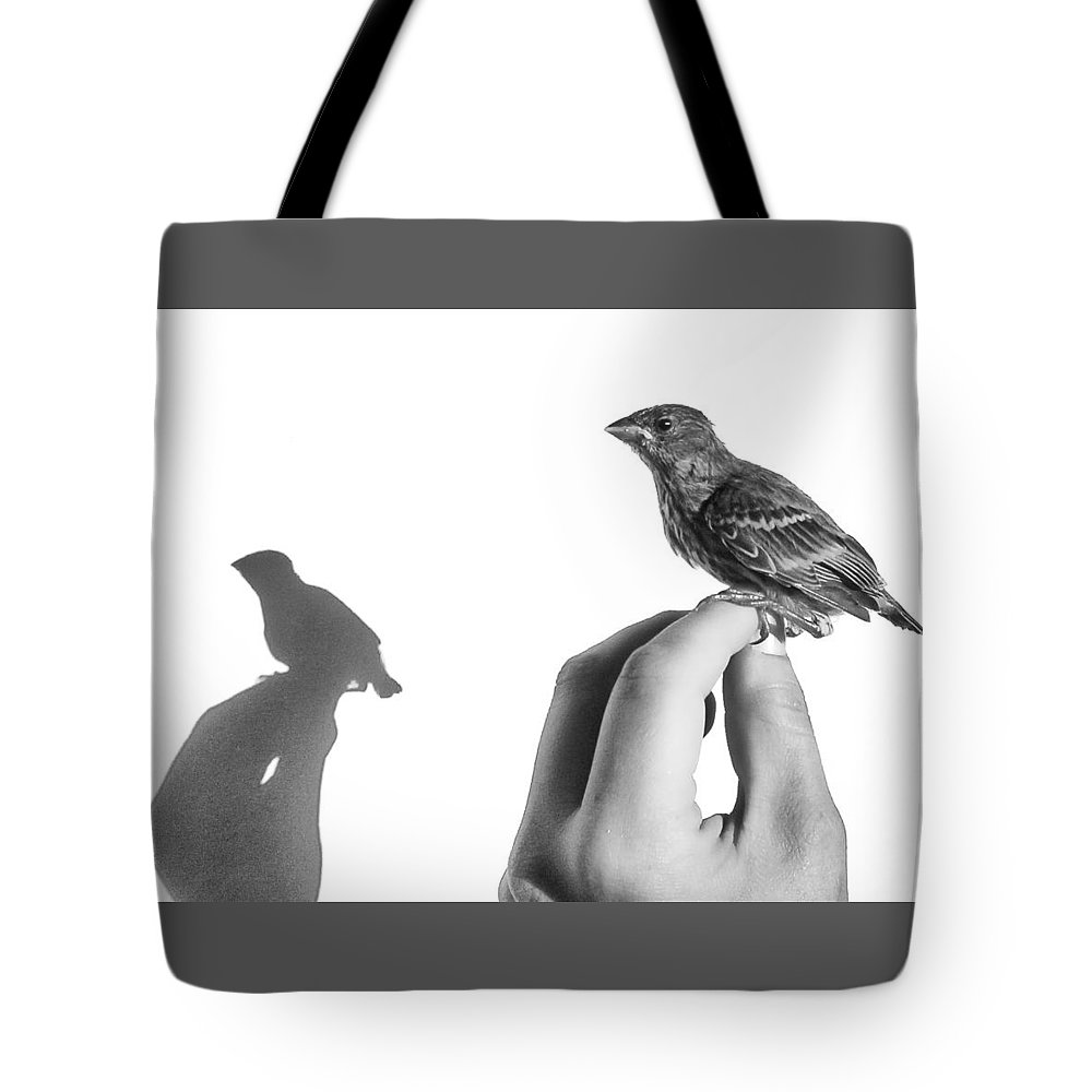 Baby Bird Tote Bag featuring the photograph A Bird On The Hand by Caitlyn Grasso