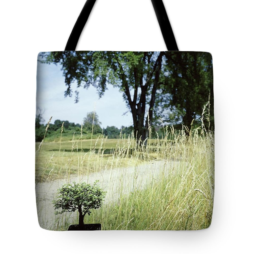 Plants Tote Bag featuring the photograph A Bonsai Tree In A Hayfield by Pedro E. Guerrero