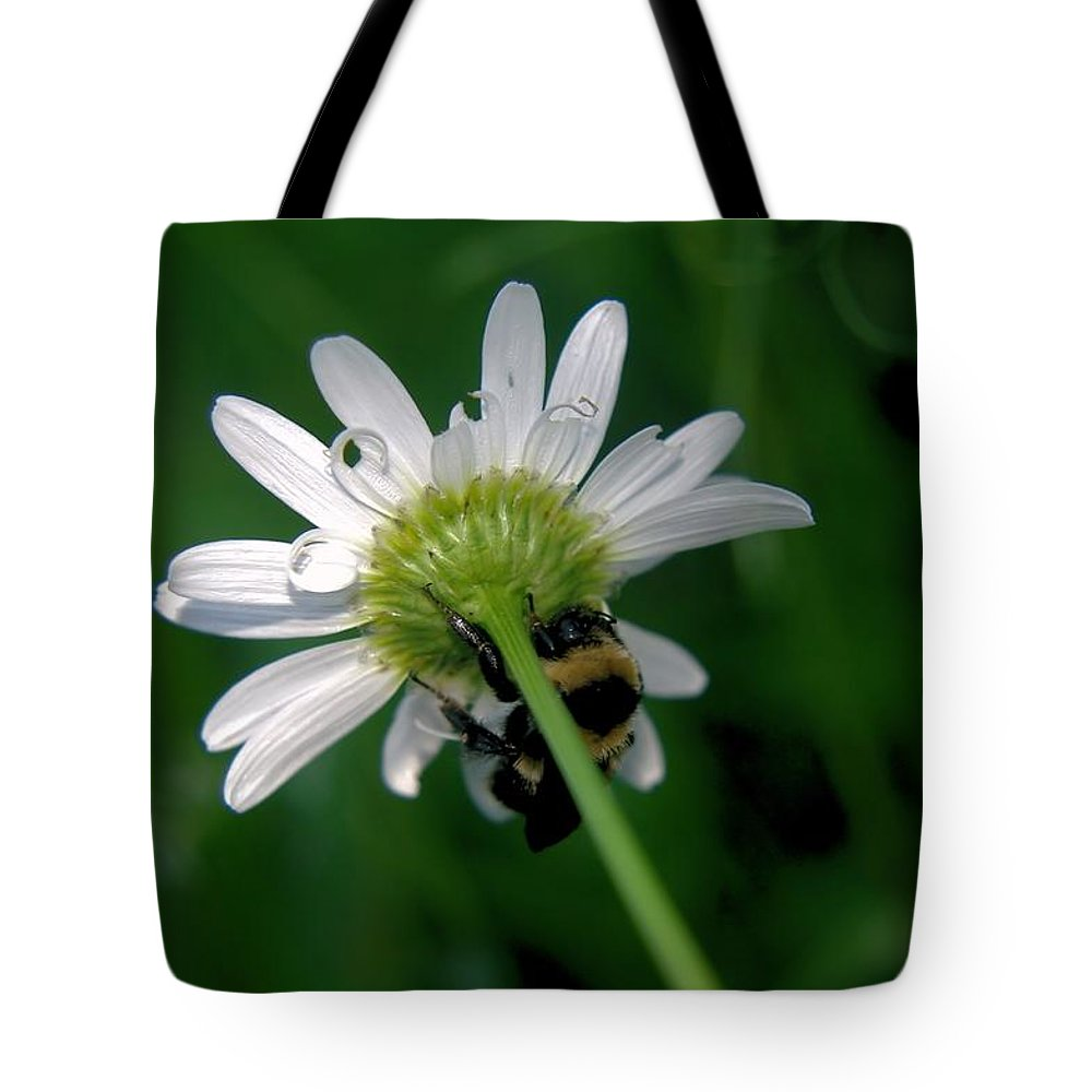 Insects Tote Bag featuring the photograph A Bumble On The Wrong Side by Jeff Swan