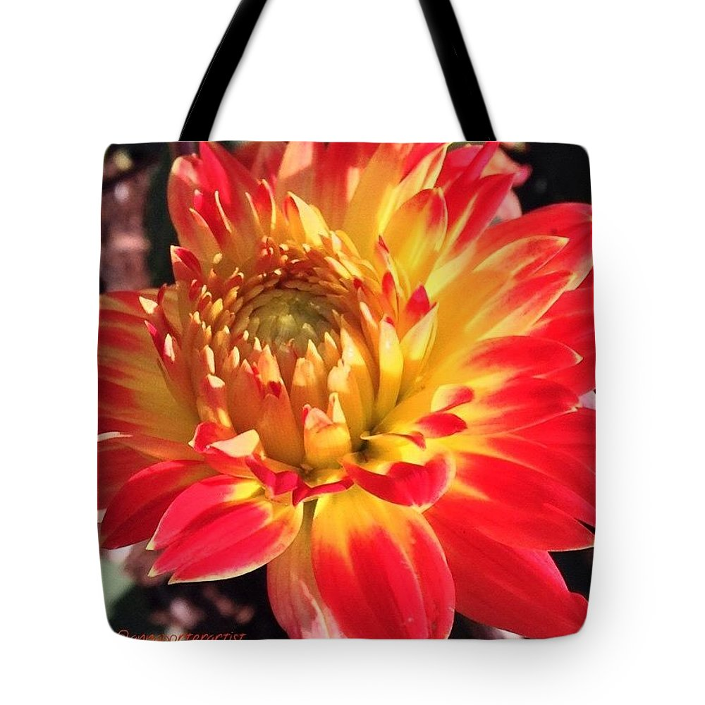 Orange Tote Bag featuring the photograph A Burst Of Fall Color by Anna Porter