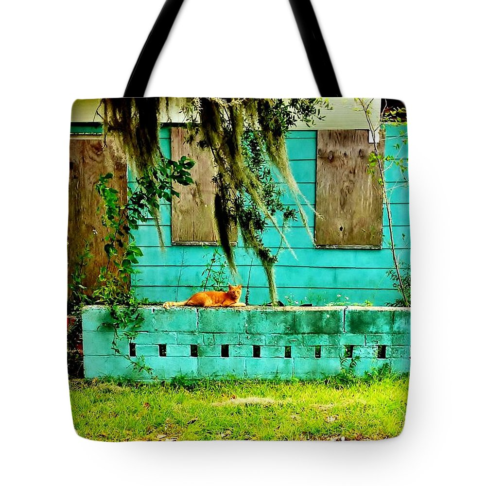 Stray Cats Tote Bag featuring the photograph A Cat And His Castle by Patricia Greer