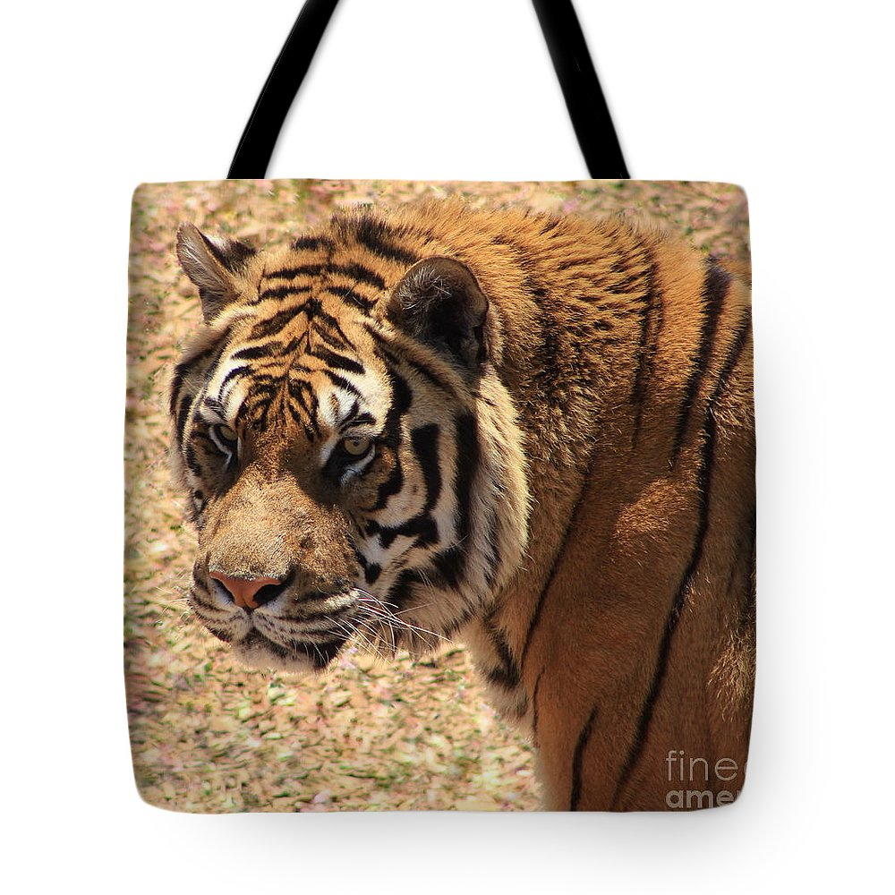 Tiger Tote Bag featuring the photograph A Classical Beauty by Fiona Kennard