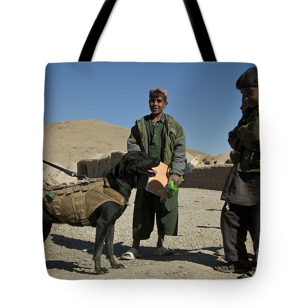 Afghanistan Tote Bag featuring the photograph A Coalition Forces Military Working Dog by Stocktrek Images
