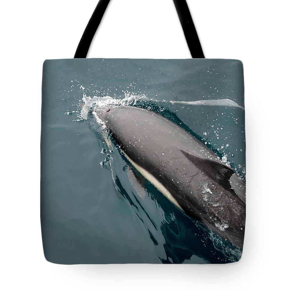 Barbara Steele Tote Bags