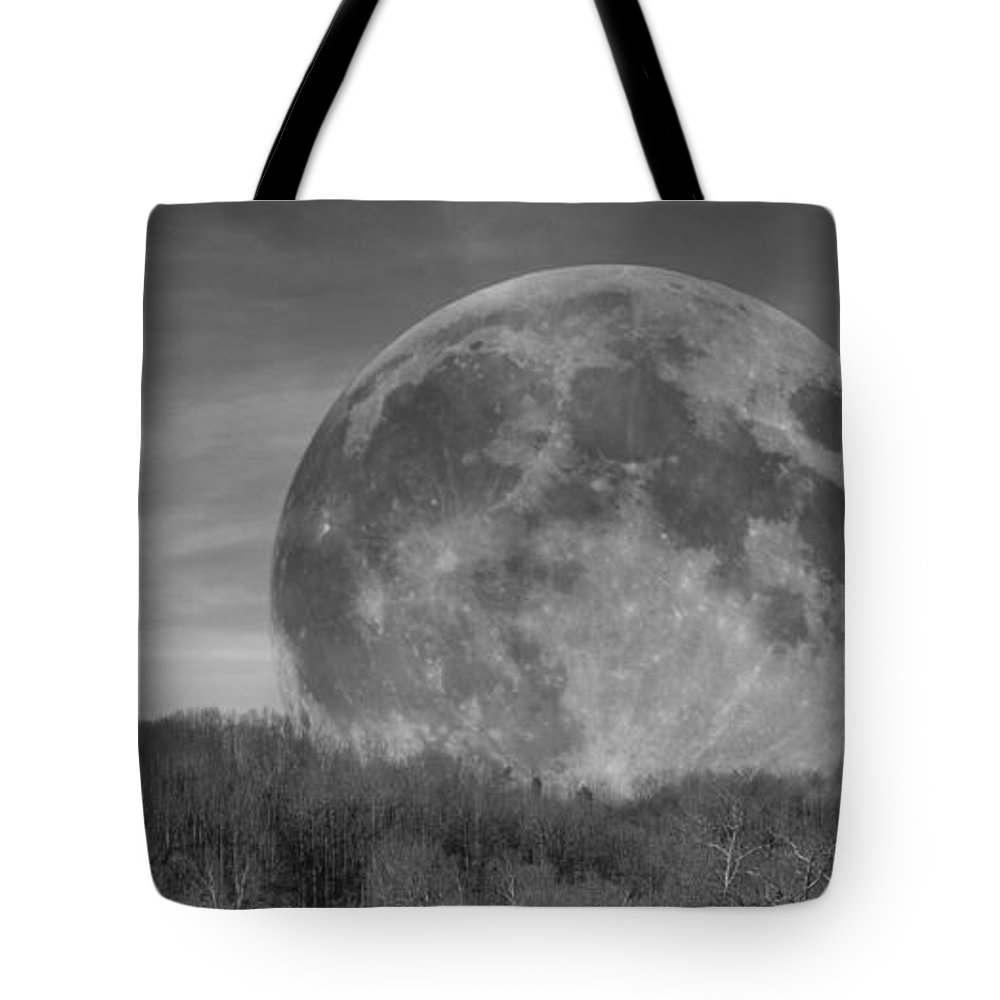 Full Tote Bag featuring the photograph A Friend At Night by Betsy Knapp