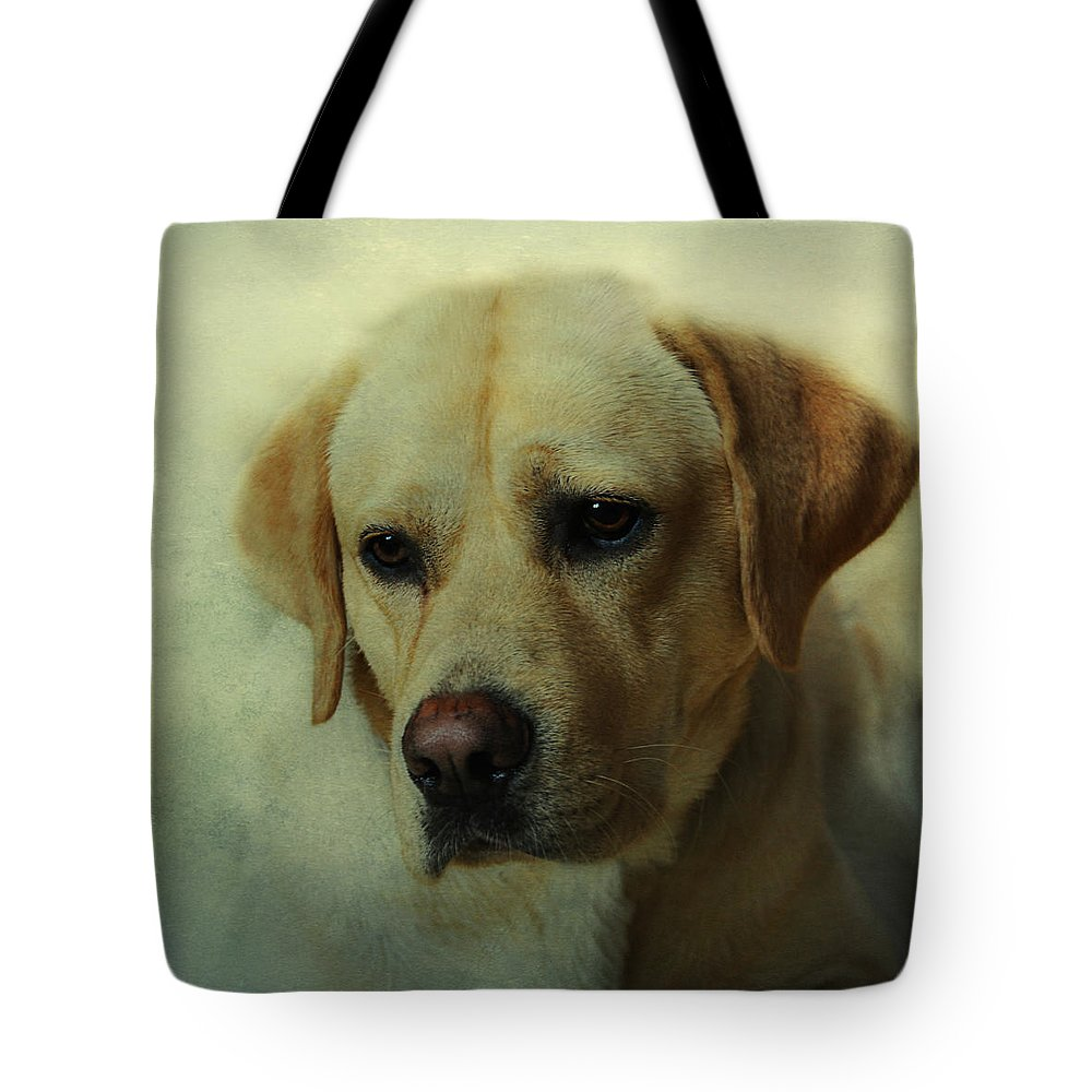 Dog Tote Bag featuring the photograph A Friend by Claudia Moeckel